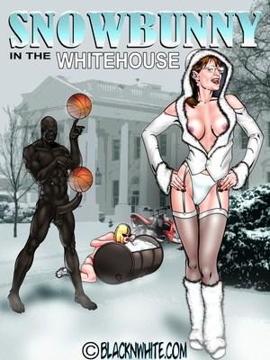 BlacknWhite- Snowbunny-White House 8muses Interracial Comics
